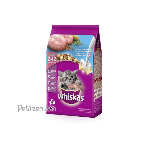 Thức ăn mèo con whiskas 1.1kg