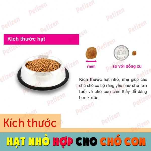 Thức ăn cho Poodle hạt thường nhỏ