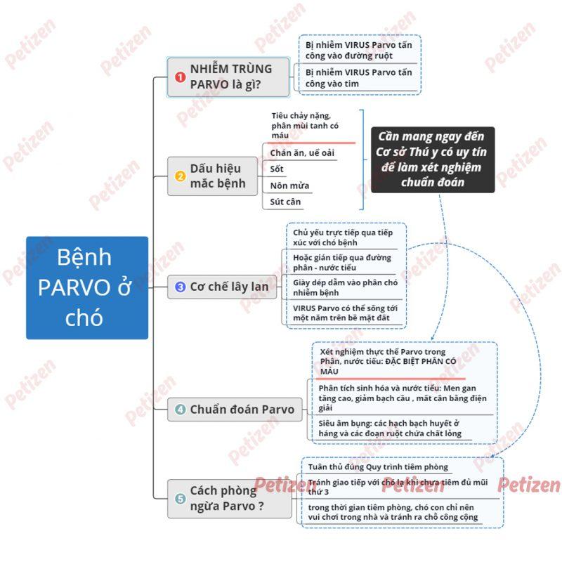 Bệnh Parvo ở Chó