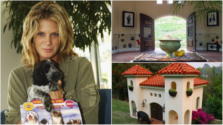 top 10 ngôi nhà xa xỉ cho chó