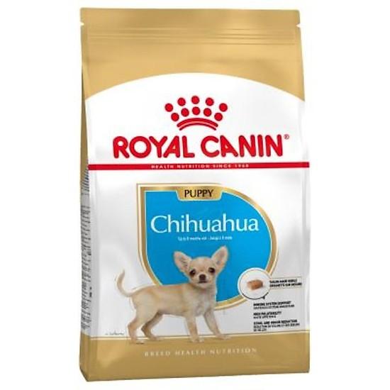 thức ăn cho chó chihuahua con