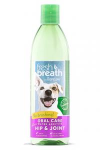 nước vệ sinh răng miệng cho chó già