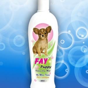 Fay puppy