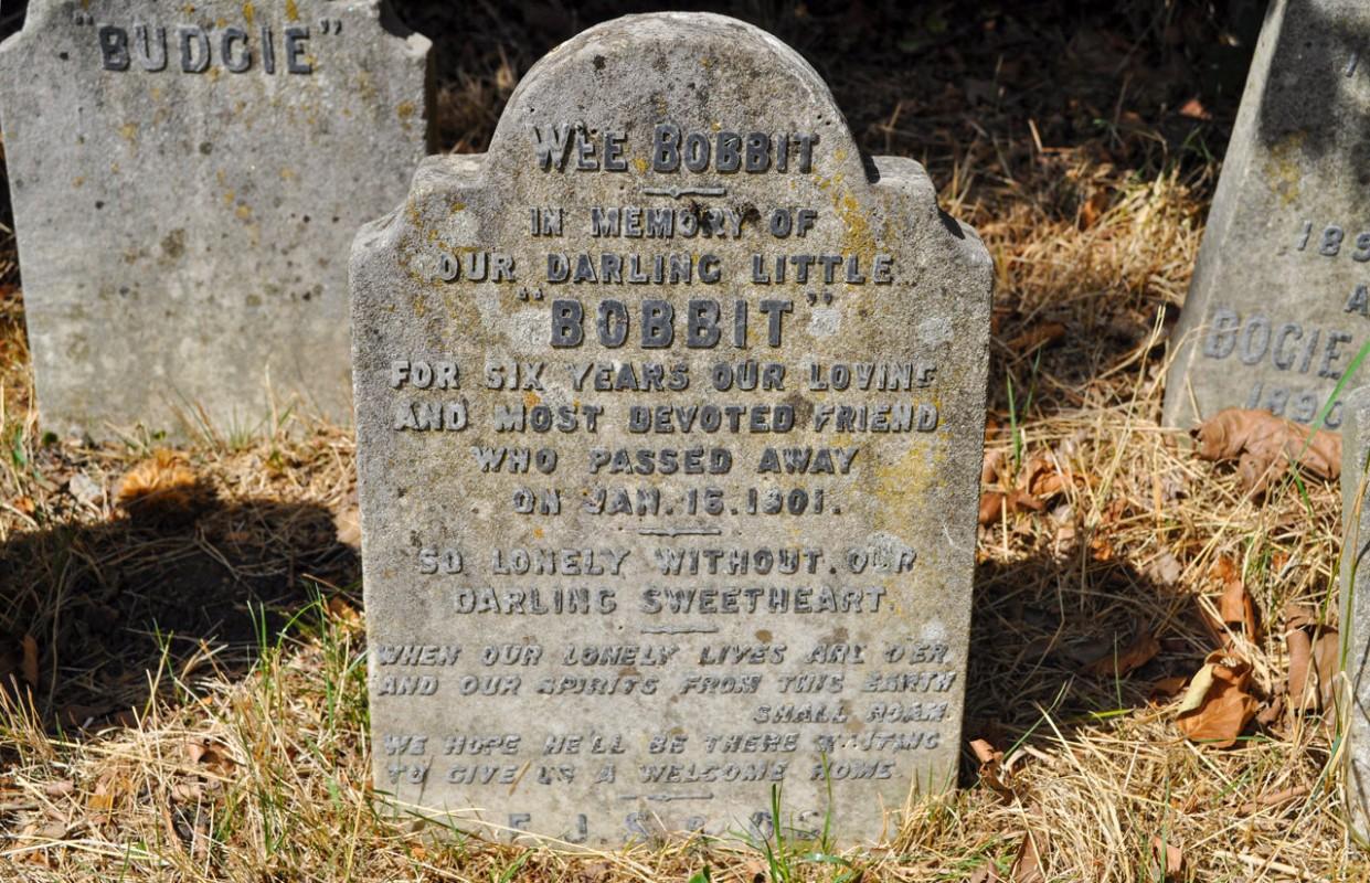 bia mộ của chú chó bobbit