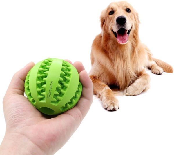 Đồ chơi cho chó dạng bóng cao su